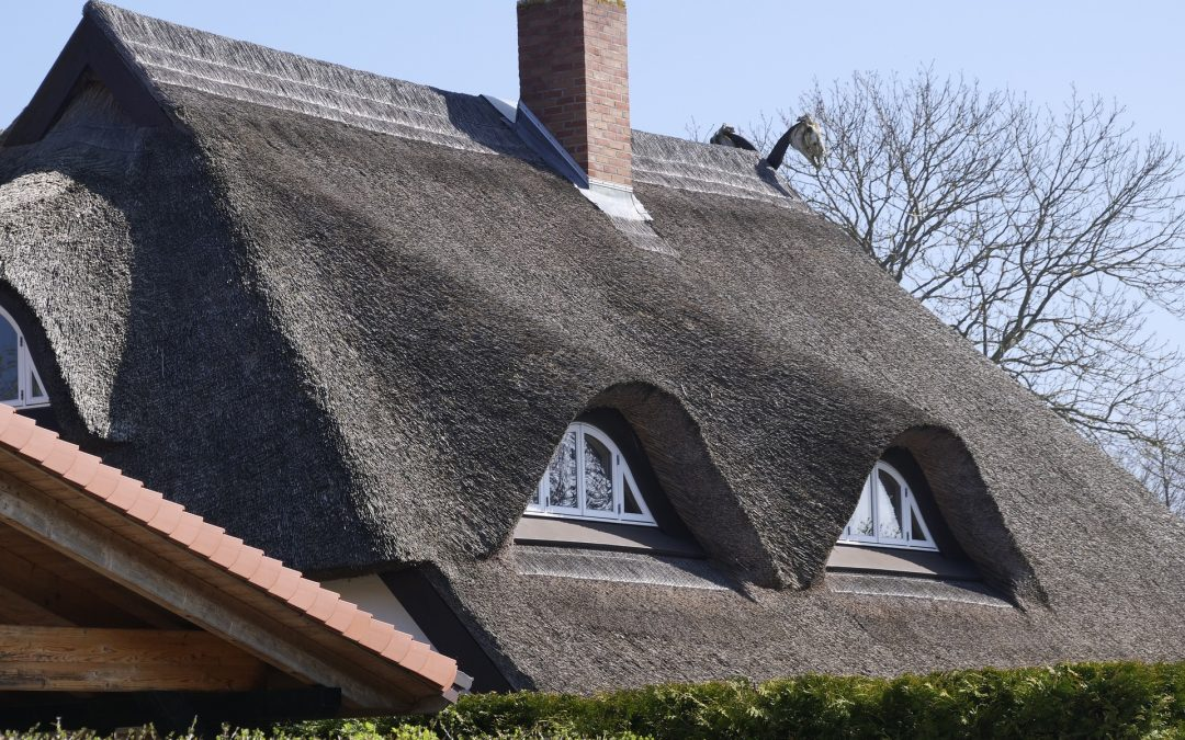 The Cost and Value of Your Roof